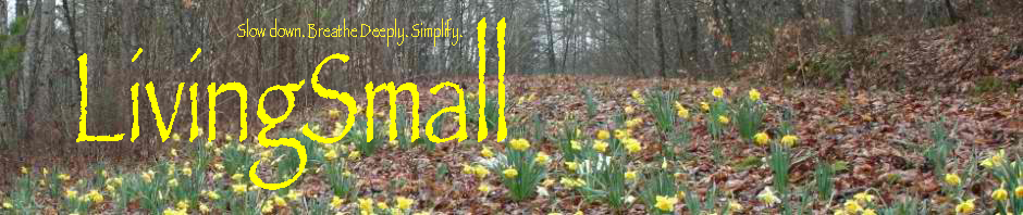 Living Small – Voluntary Simplicity Ideas